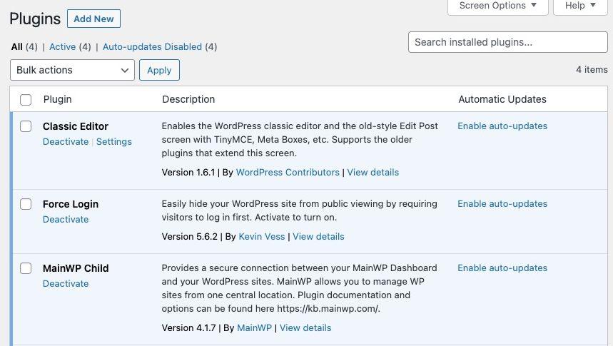WordPress maintenance automatic updates